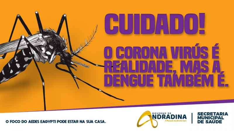 Noticia saude-vai-intensificar-acoes-contra-a-dengue